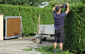 professional Combe Raleigh hedge cutting services