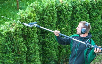 Combe Raleigh hedge trimming costs