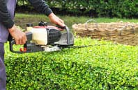 Combe Raleigh hedge trimming services