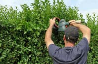 free Combe Raleigh hedge trimming quotes
