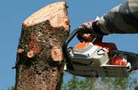 free Combe Raleigh tree removal quotes
